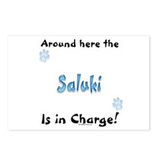 Saluki Charge Postcards (Package of 8)