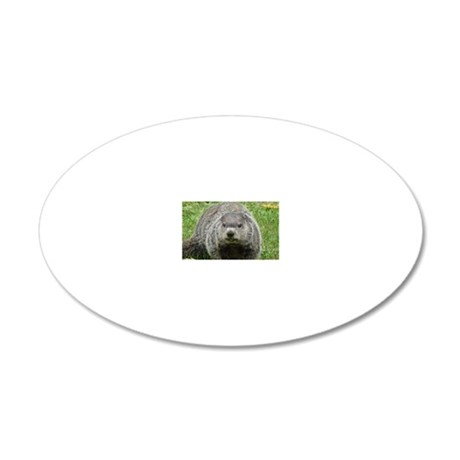 GHHat2x4 20x12 Oval Wall Decal