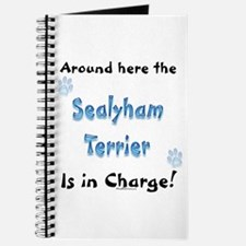 Sealy Charge Journal