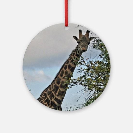 giraffe Round Ornament