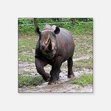 """rhino Square Sticker 3"""" x 3"""""""