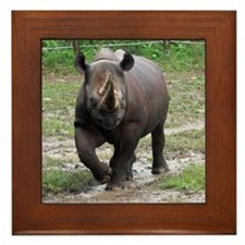rhino Framed Tile