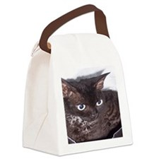 Cat-Sack-1 Canvas Lunch Bag