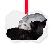Cat-Wrap-1 Ornament