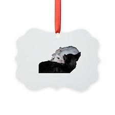 Cat-Wrap-1 Picture Ornament