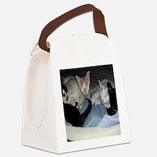 Cat-Bag-1 Canvas Lunch Bag