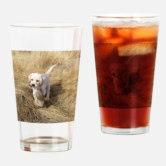 labpuphunt calendar Drinking Glass