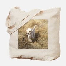 labpuphunt calendar Tote Bag