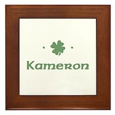 """""""Shamrock - Kameron"""" Framed Tile"""