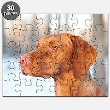 CricketWinter Puzzle