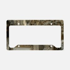 Architecture by Antoni Gaudi  License Plate Holder