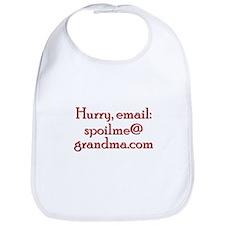Help! Email Grandma Bib