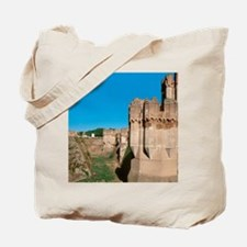 Archbishop of Seville and master of Coca. Tote Bag