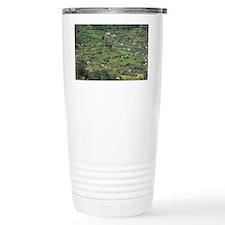 Europe, Portugal, Madeira. Terr Travel Mug