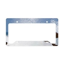 Water spraying from a blowhol License Plate Holder