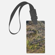 Switzerland. Hiking trails atop  Luggage Tag