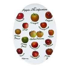 appleT Oval Ornament