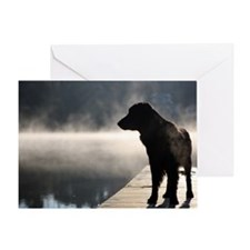 Flat Coat in the Fog Greeting Card