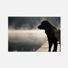 Flat Coat in the Fog Rectangle Magnet