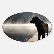 Flat Coat in the Fog Sticker (Oval)
