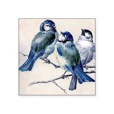 "blue birds Square Sticker 3"" x 3"""