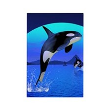 orca_iphone_4_slider_case Rectangle Magnet