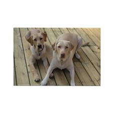Otis and Buster Rectangle Magnet