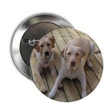 """Otis and Buster 2.25"""" Button"""