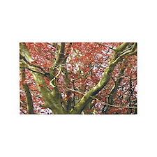 redtree2 wide 3'x5' Area Rug