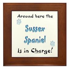Sussex Charge Framed Tile