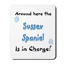 Sussex Charge Mousepad