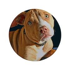 """PuppyPitbullmouse 3.5"""" Button"""