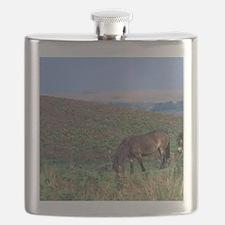 Europe, England, Devon, Exmoor. Exmoor ponie Flask