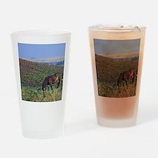 Europe, England, Devon, Exmoor. Exm Drinking Glass