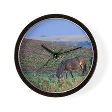 Europe, England, Devon, Exmoor. Exmoor  Wall Clock