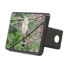 Coop10x8 Hitch Cover