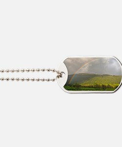 UK. Rainbow and Sheep in a field in the S Dog Tags