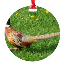Ph10x8 Ornament