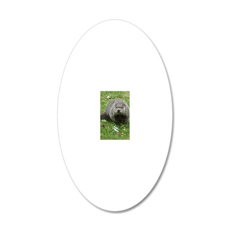 GH10x8 20x12 Oval Wall Decal