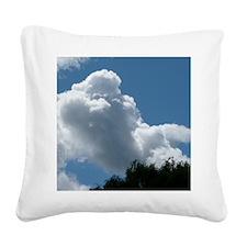 ClPood10x8 Square Canvas Pillow