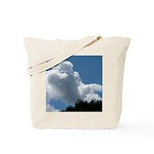 ClPood10x8 Tote Bag
