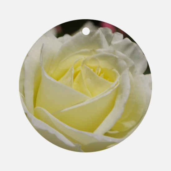 Ivory rose Round Ornament