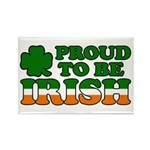 Proud to Be Irish Tricolor Rectangle Magnet