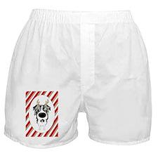 BlueMerleAussie2 Boxer Shorts