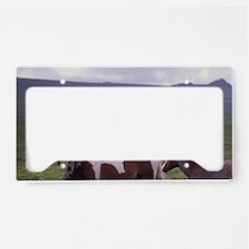 Europe, England, Devon, Dartm License Plate Holder