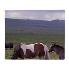 Europe, England, Devon, Dartmoor. Ho Throw Blanket