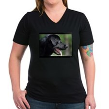 Black Labrador Shirt