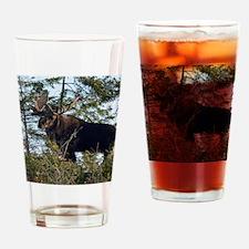 9x7  6 Drinking Glass