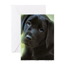 BlackLabPuppy2006 Greeting Card