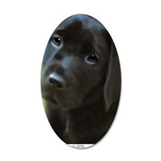 BlackLabPuppy2006 35x21 Oval Wall Decal